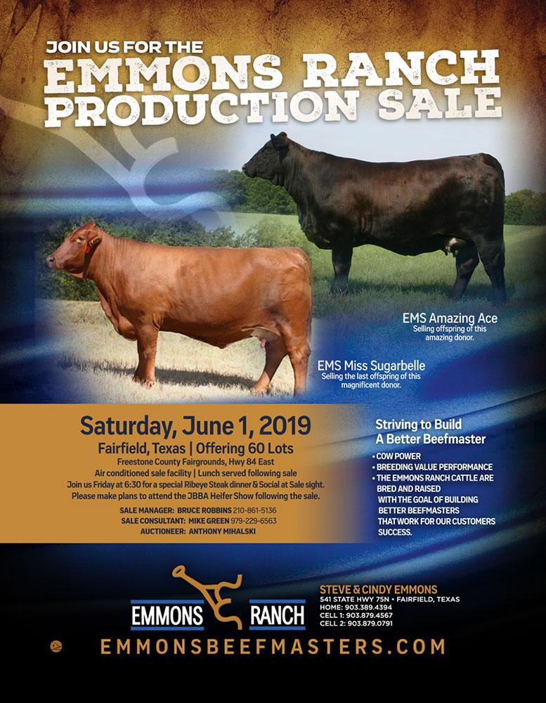 Sale – Emmons Beefmasters